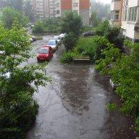 Вода, вода ... (Вчерашний дождь) :: Андрей Лукьянов