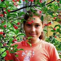 Вишенка :: Татьяна Овчинникова