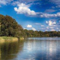 На реке Цне. :: Александр Селезнев