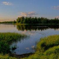 Вечер на озере.... :: Владимир Шутов