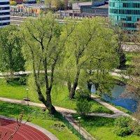 Вид со смотровой площадки :: Олег Попков