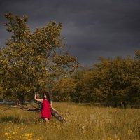Яблоневый сад :: Женя Рыжов