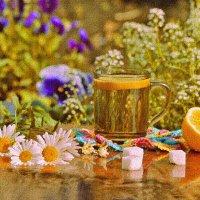 Живу – и наслаждаюсь, душа опять поёт! :: galina tihonova