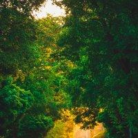 road :: Eugene B