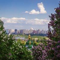 Выдубицкий монастырь весной :: Андрей Нибылица