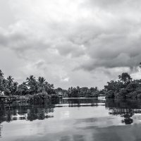 по малазийской реке :: Александр