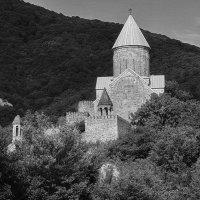 Живые руины :: M Marikfoto