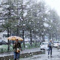 Перемена погоды :: Olga Ксензова
