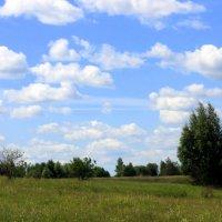 Летнее небо. :: оля san-alondra