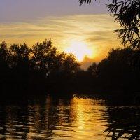 Летний закат . :: Мила Бовкун
