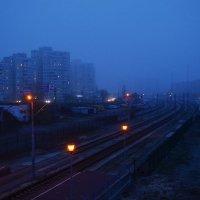 Синий туман, похож на обман... :: Валентина Данилова