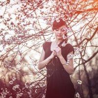 цветущие сады :: Оля Грушевская