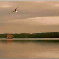 Снова - в море... :: Кай-8 (Ярослав) Забелин