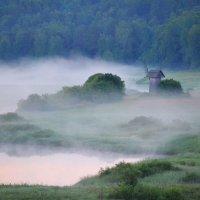 Туманы в Пушкинских горах :: Наталья Левина