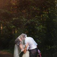 Свадьба  Анатолия и Татьяны :: Татьяна Кочева