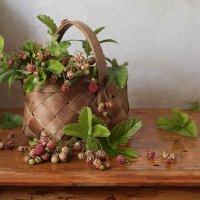 Ароматные ягодки :: Карачкова Татьяна