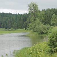Добрянский пруд. :: petyxov петухов