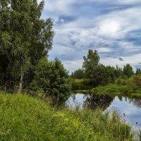 Лето - это хорошо, :: Андрей Дворников