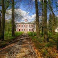 Главный дом усадьба Большие Вяземы :: mila