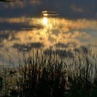 Вечер на озере. :: Марина