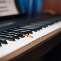 В тот момент, когда мы влюбляемся, в нас рождается особая музыка  :) :: Алексей Латыш
