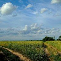 Две дороги :: Юрий Анипов