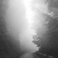 Зловещая дорога в горы... :: deniil romanenko