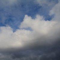 Облако. :: Полина Лаврова