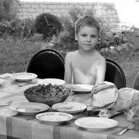 ...Федька на даче... :: Ольга Нарышкова