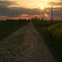 road :: Виктор