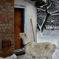 """Проект """" двери"""". Ваша мама пришла.... :: Наталья S"""