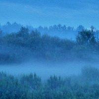 Туман. :: Сергей Комков