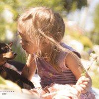 Я тебя люблю!!!! :: Вера Арасланова