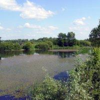 Вовчинецкое  озеро :: Андрей  Васильевич Коляскин