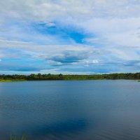 Озеро в д.Патики :: Uliya T