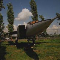 МиГ-25 (Нижний Новгород, Парк Победы) :: Павел Зюзин