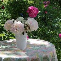 Лето в саду :: Mariya laimite