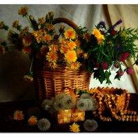 Цветы июня. :: Galina S*