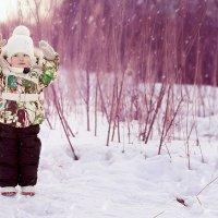 Зимняя сказка :: Александра Гилета