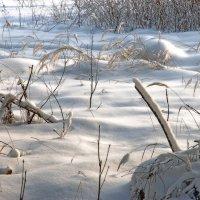 Зима :: sergej-smv