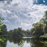 Летнее озеро. :: Андрий Майковский