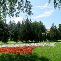 Первый день июля в городе... :: Тамара (st.tamara)