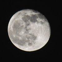 Луна :: Елена Ушакова