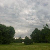 Небо вспучилось тучами... :: Николай Дони