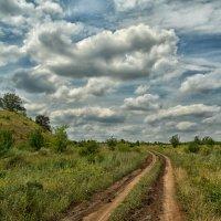Дороги,дороги... :: Marina Timoveewa