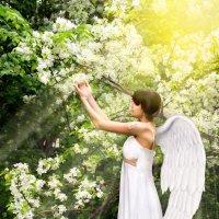 Прикосновение к прекрасному :: L. Anna