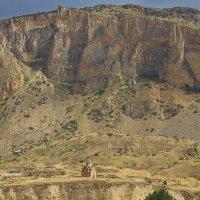 Страждущий дойдет...2 - рисунки армянских камней :: M Marikfoto