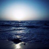 Умей смотреть поверх земного... :: Swetlana V