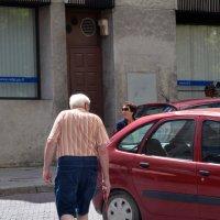 Дед с собачкой :: Kliwo