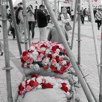 Цветы на мешках :: Ростислав